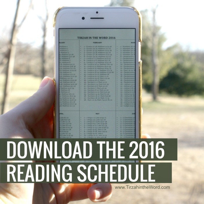Download the 2016 Bible reading schedule